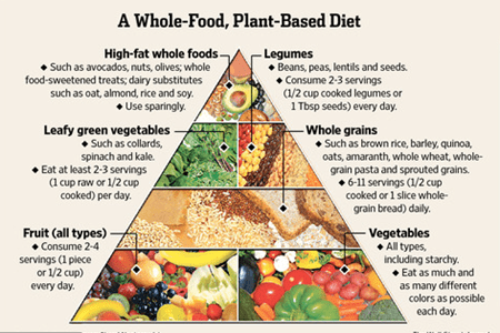 Plant based diet beginners guide eatplant based plant based diet plan forumfinder Image collections