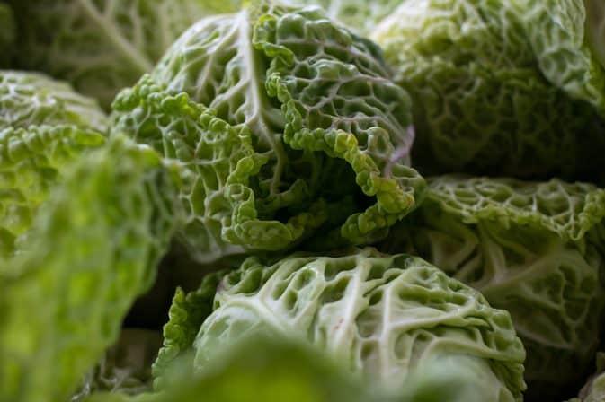 vegan teriyaki stir fry. napa cabbage