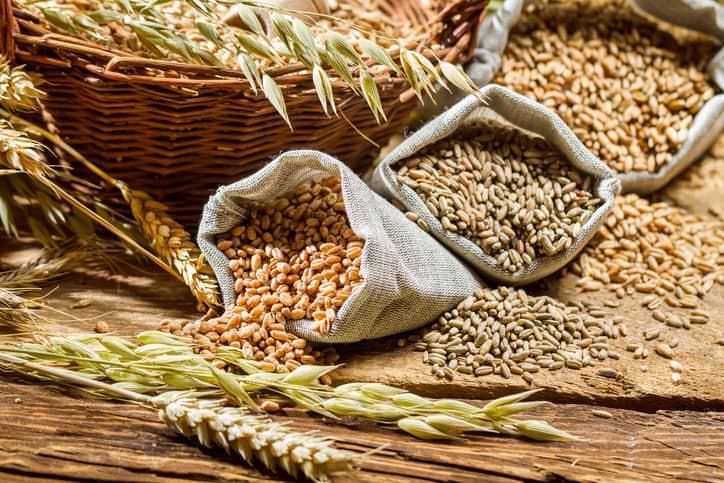 plant based diet grocery list grains