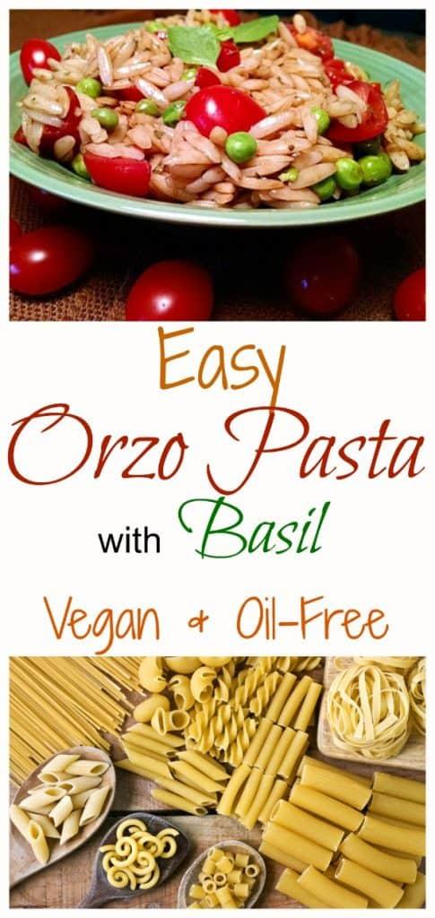 Vegan Orzo Pasta with Basil
