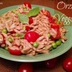 Vegan Orzo Pasta with Basil