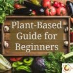 Plant-Based Diet Beginners Guide